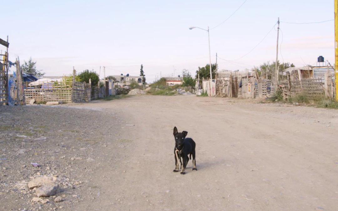 La crisis de Agbar en Saltillo