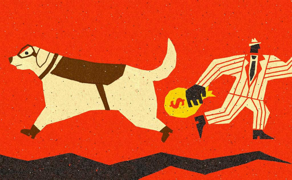 Ilustración de Dani Scharf